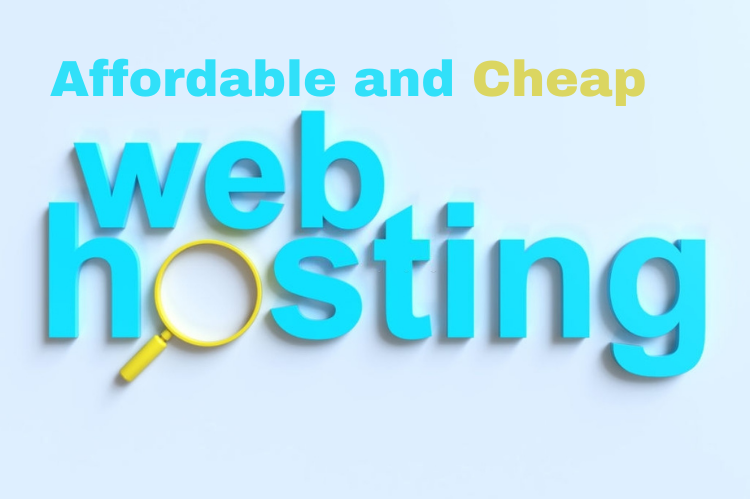 Get Cheap Domain and Web Hosting in Pakistan